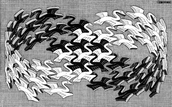 Escher's moebius band of birds